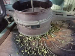 半発酵茶製造